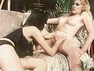 Chris Cassidy's Fantasies 1982